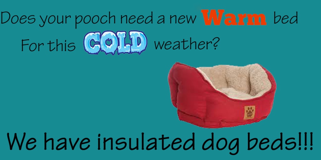 insulated dog beds